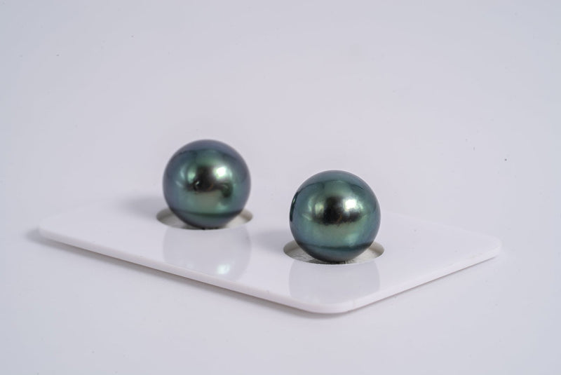 Purple Blue Pearl 11mm Matched Pair - Round AA quality Tahitian Pearl Earrings