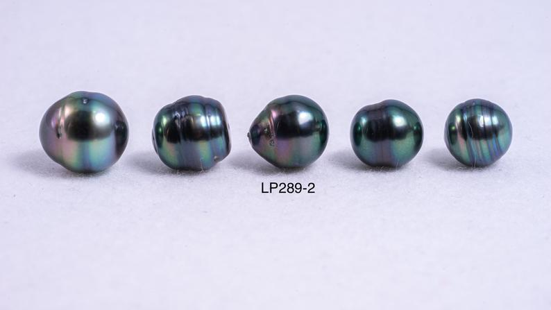 5pcs pack - CL 8-10mm Royal Green/ AAA quality Tahitian Pearl