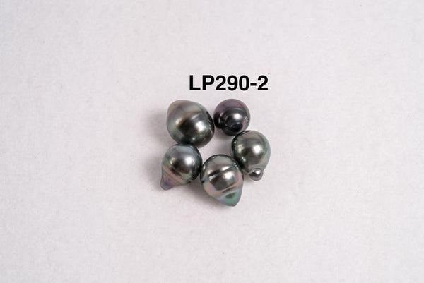 5pcs color pack - CL 8-10mm / AAA quality Tahitian Pearl