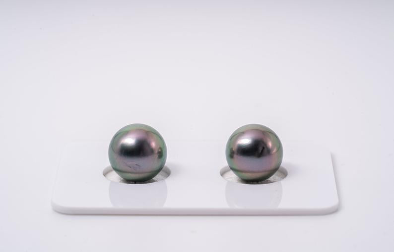 Light Peacock Matched Pair - Round 10mm AA quality Tahitian Pearl Earrings