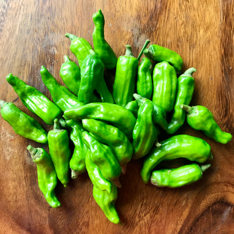 Shishito Peppers 125g