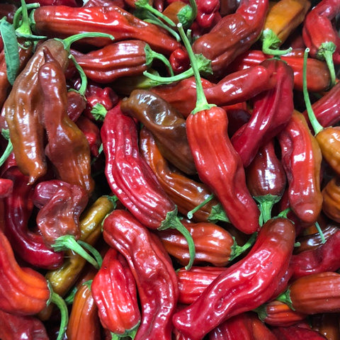 Red Shishito Peppers 250g