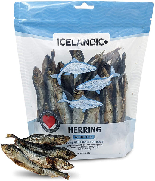 ICELANDIC HERRING WHOLE DOG 12OZ