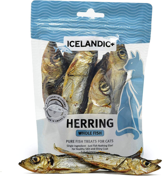 ICELANDIC HERRING WHOLE CAT 1.5OZ