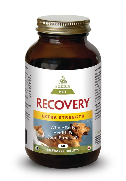 PURICA RECOVERY SA EXT STRENGTH 60CHEW