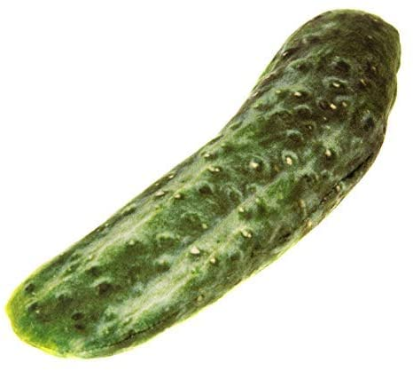 NCT SILVERVINE PLUSH CUCUMBER CUDDLE TOY