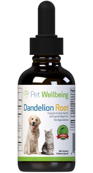 PET WELLBEING DANDELION ROOT 2OZ