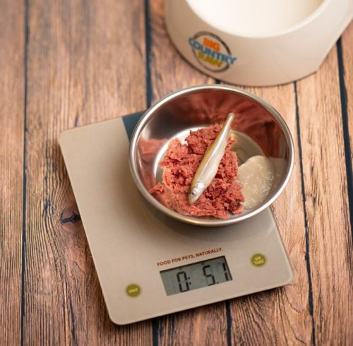 BCR KITCHEN SCALE LG