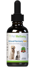 Load image into Gallery viewer, PET WELLBEING ADRENAL GOLD 4OZ