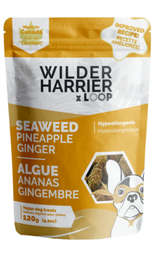 WILDER HARRIER WAKAME PINEAP/GING 120G