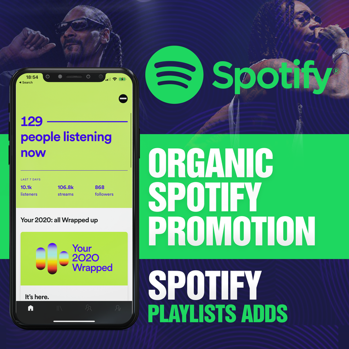 Spotify Playlists Placements