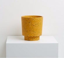 Load image into Gallery viewer, Banjo Pot Terrazzo Golden