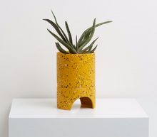 Load image into Gallery viewer, Archie Pot - Terrazzo Golden