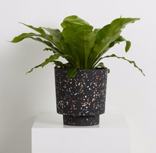 Load image into Gallery viewer, Banjo Pot Terrazzo Black