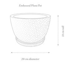 Load image into Gallery viewer, Embossed Plant Pot
