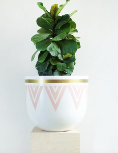 Deco Echo Pot (Pink) - Medium