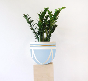 Ivy Pot - Light Blue
