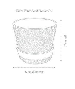 White-Water Bead Planter Pot