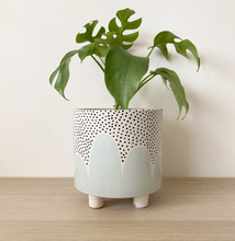 Load image into Gallery viewer, Leggy Planter - Poppy Seed