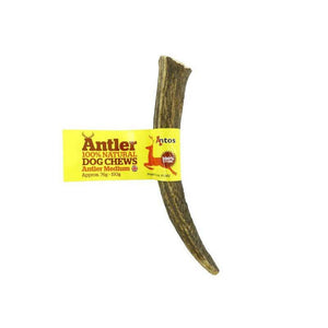 Antos Antler-variable-Oh Doggy