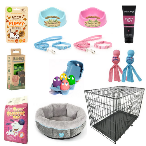 Puppy 'Take Home' Bundle-Oh Doggy