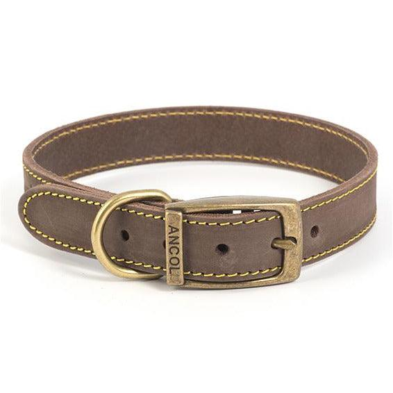 Ancol Timberwolf Leather Dog Collars - Oh Doggy