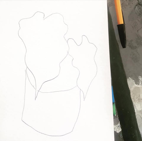 Basic outline drawing of Alocasia plant