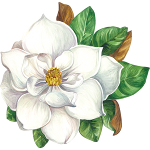 Load image into Gallery viewer, Die-Cut Magnolia Placemat