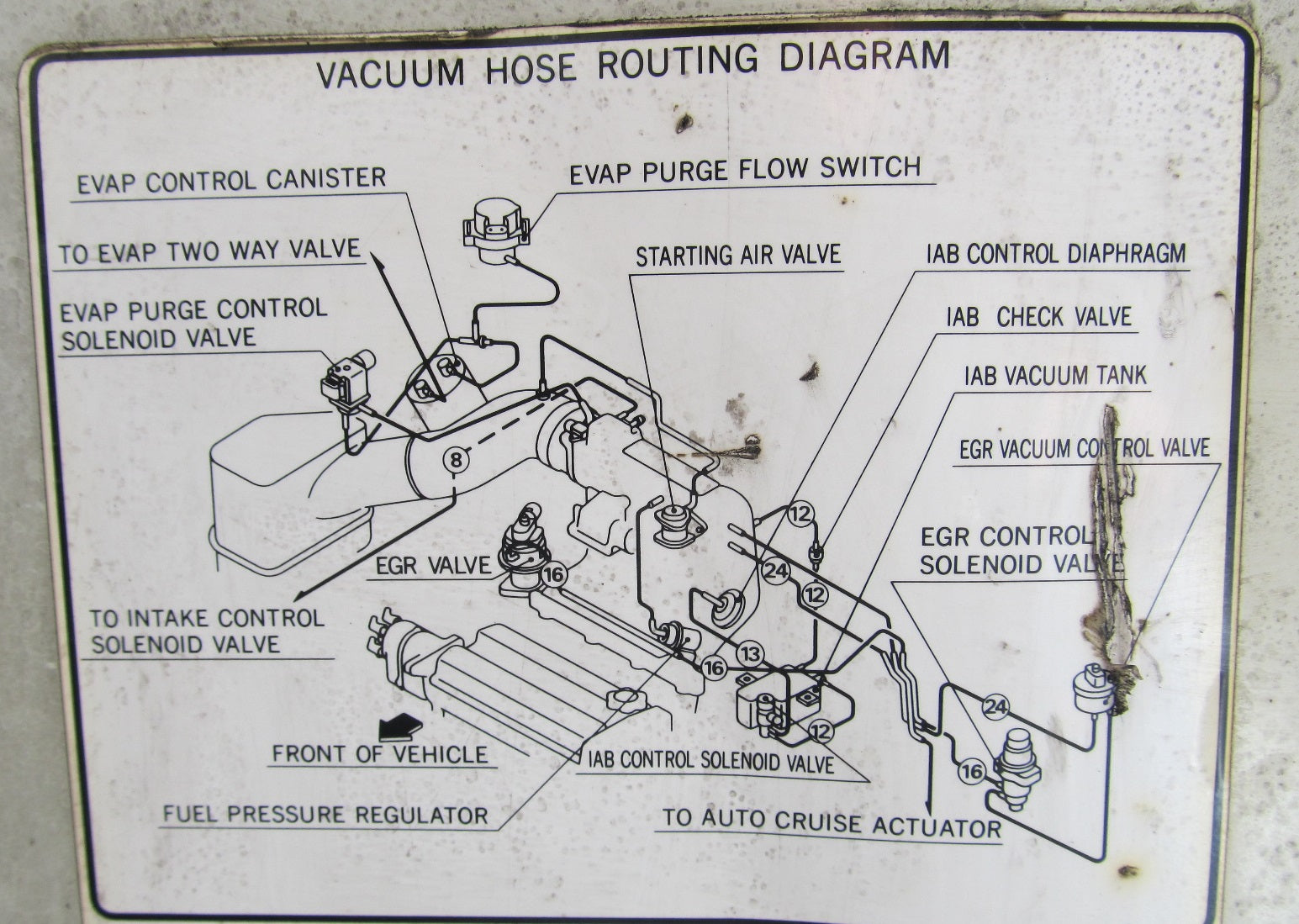 diagram] 1983 honda prelude engine diagram full version hd quality engine  diagram - mtswiring.prolocomontefano.it  prolocomontefano.it