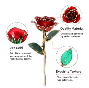 24K Gold Dipped Red Rose