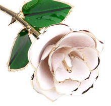 Load image into Gallery viewer, 24K Gold Dipped White Rose