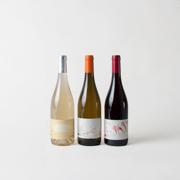 TRICOT PACK (x3 Bottles) - Discovery of Auvergne wines