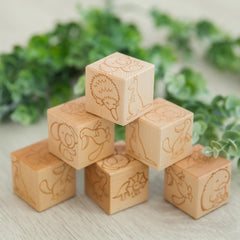 Wooden Blocks - Australian Animals