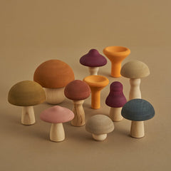 Wooden Mushrooms Set