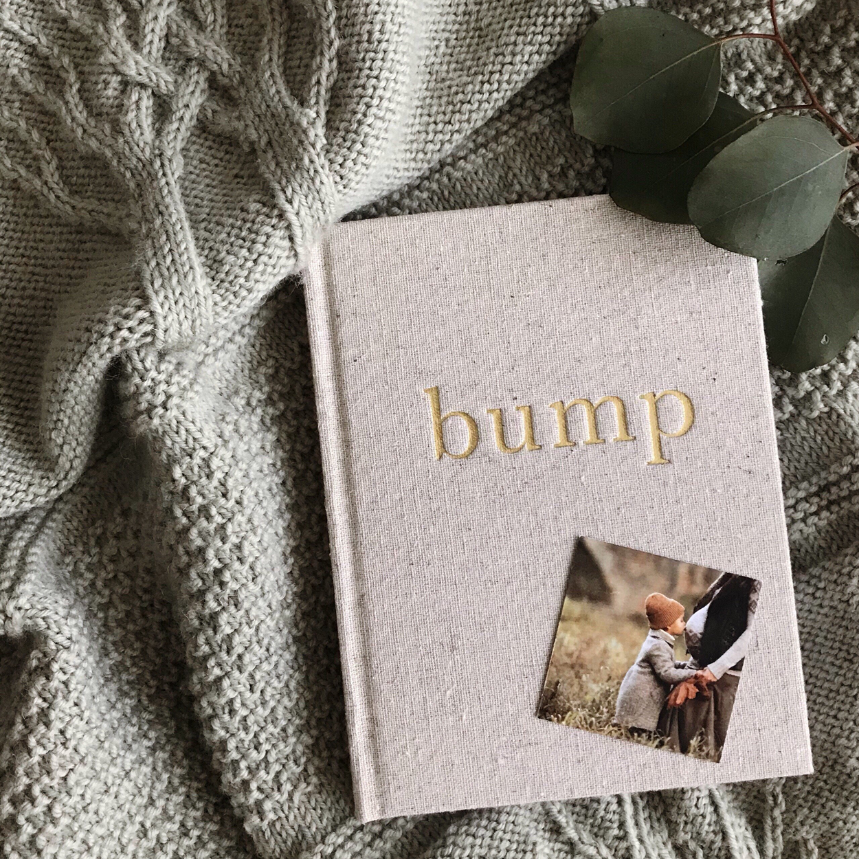 Bump Journal: A Pregnancy Story