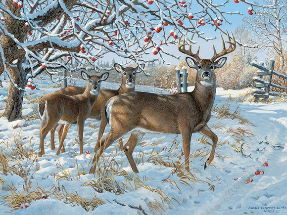 Cobble Hill Winter Deer 1000 pc