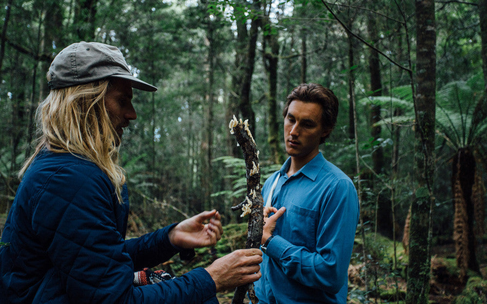Jasson Salisbury foraging the local Tasmanian forest for edibles