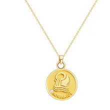 Load image into Gallery viewer, Star Sign Coin Necklace - Pine Jewellery