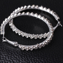 Load image into Gallery viewer, Crystal Hoops - Pine Jewellery