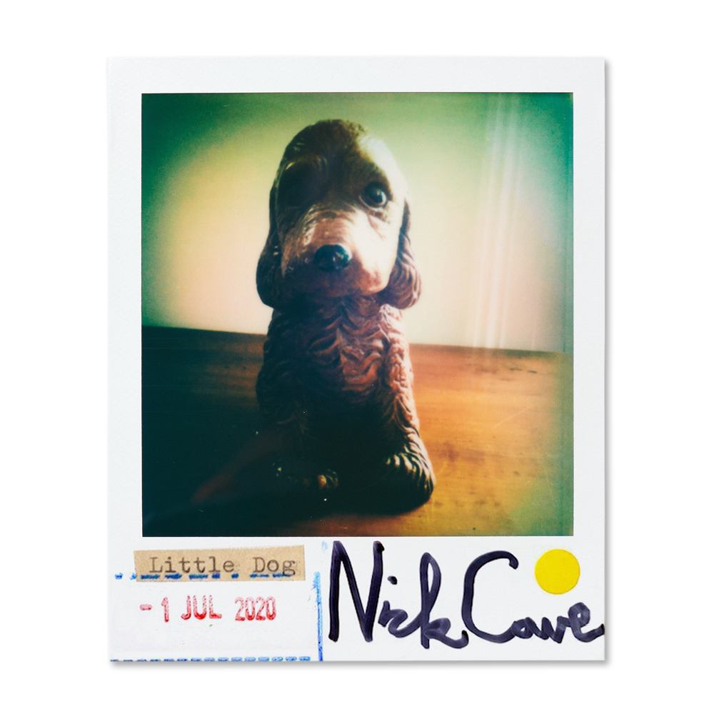 Load image into Gallery viewer, Little Dog Polaroid