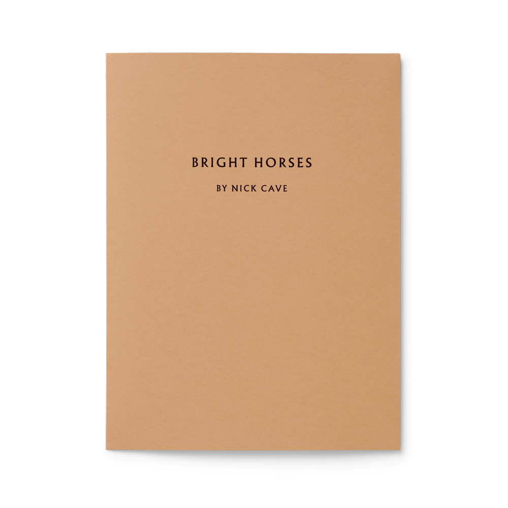 Load image into Gallery viewer, Bright Horses Limited edition lyric sheets