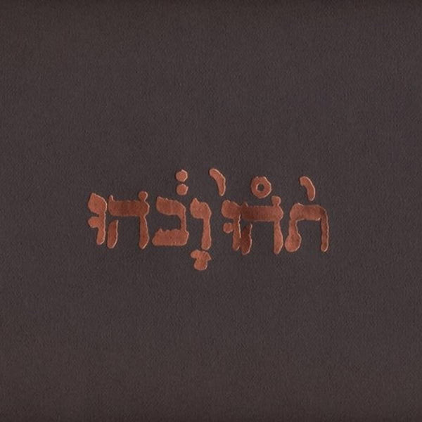 Godspeed You Black Emperor!/Slow Riot For New Zero Kanada EP [LP]