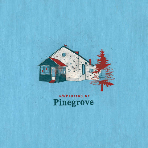 Pinegrove/Amperland, NY [LP]