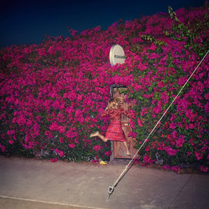 Feist/Pleasure [CD]