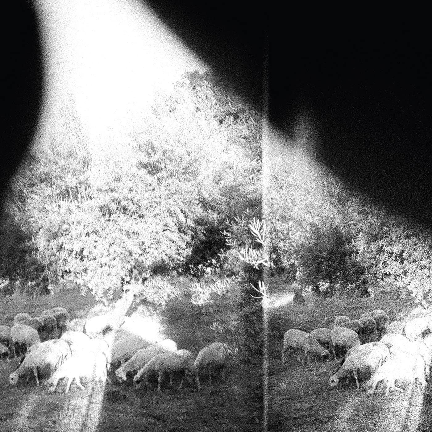 Godspeed You Black Emperor/Asunder, Sweet and Other Distress [LP]