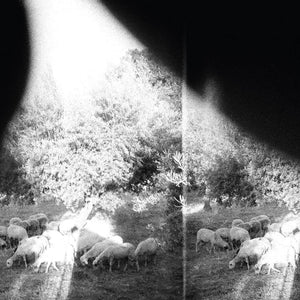 Godspeed You! Black Emperor/Asunder, Sweet and Other Distress [CD]