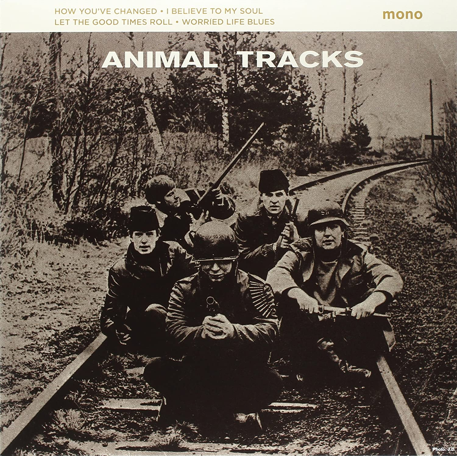 Animals, The/Animal Tracks 10 Inch [LP]