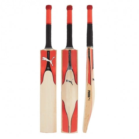 Puma Evospeed 6.17 Cricket Bat