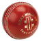Gray Nicolls Test Crown Cricket Ball