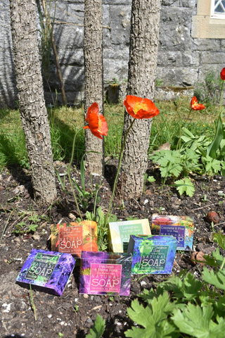 poppies and natural soap
